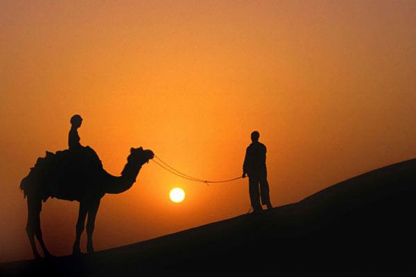 Kamelsafari, Wüste Thar, bei Bikaner, Rajasthan