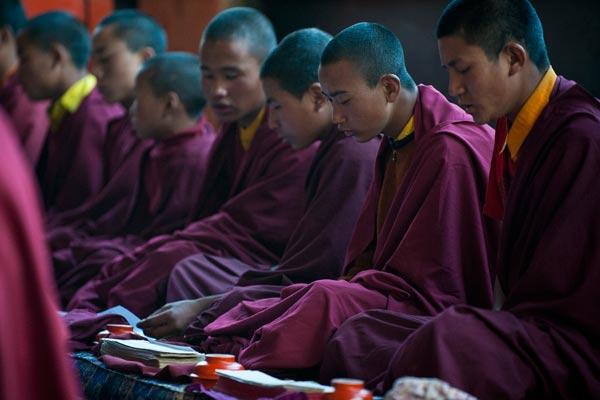 Gebet, Tawang Khinmey Nyingma Monastery, Arunachal Pradesh