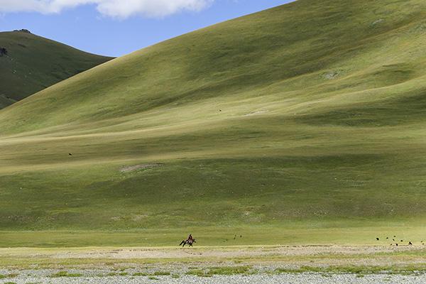Mongolei - Reiter